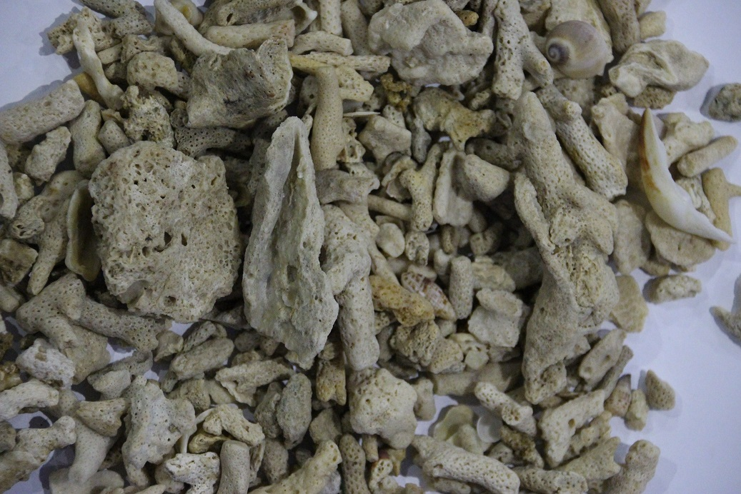 crush coral sand 25-45mm 15kg