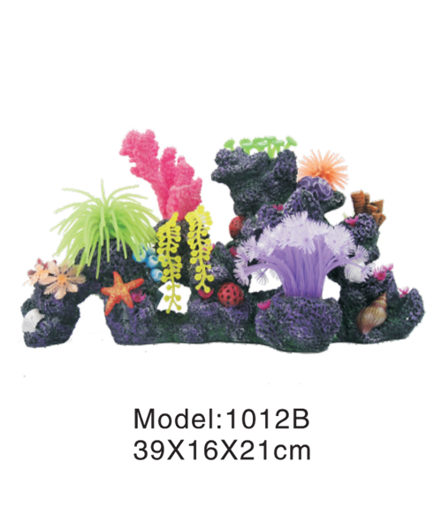rock with coral