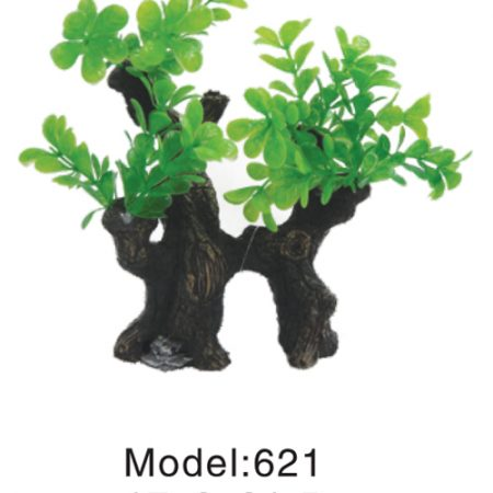 plant on root