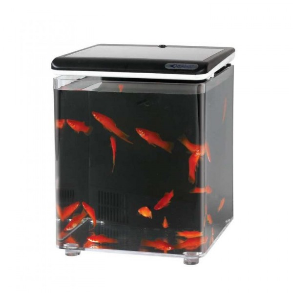 Fish home monaco pet aquariums for Cat proof fish tank
