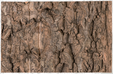 natural cork background