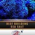 reef building sea salt